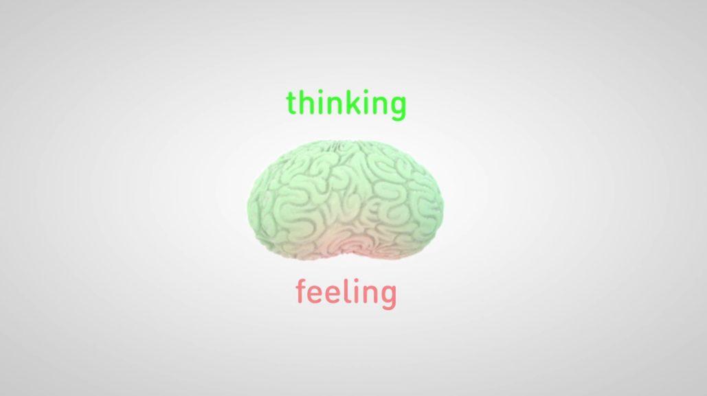 Brain-Friendly Organisational Programmes